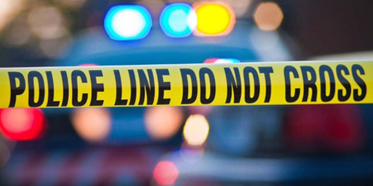 Officer injured, 2 others wounded in Florida shooting spree