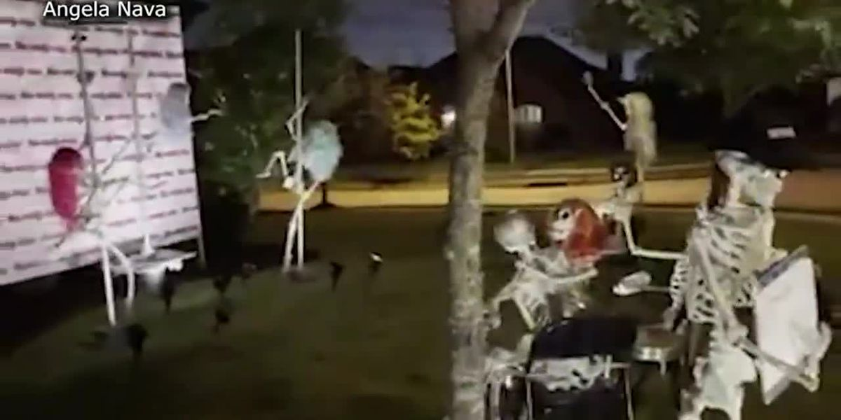 HOA tells Texas woman to remove pole-dancing skeletons display