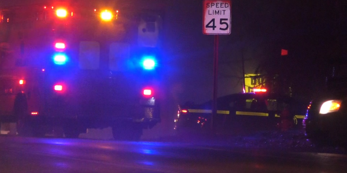 Pedestrian hit and killed by vehicle outside Chaumont has been identified