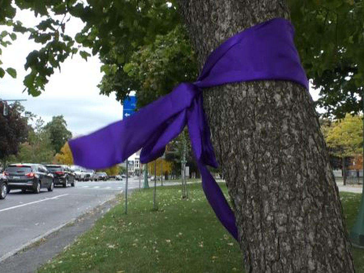 Why purple ribbons are tied around local trees