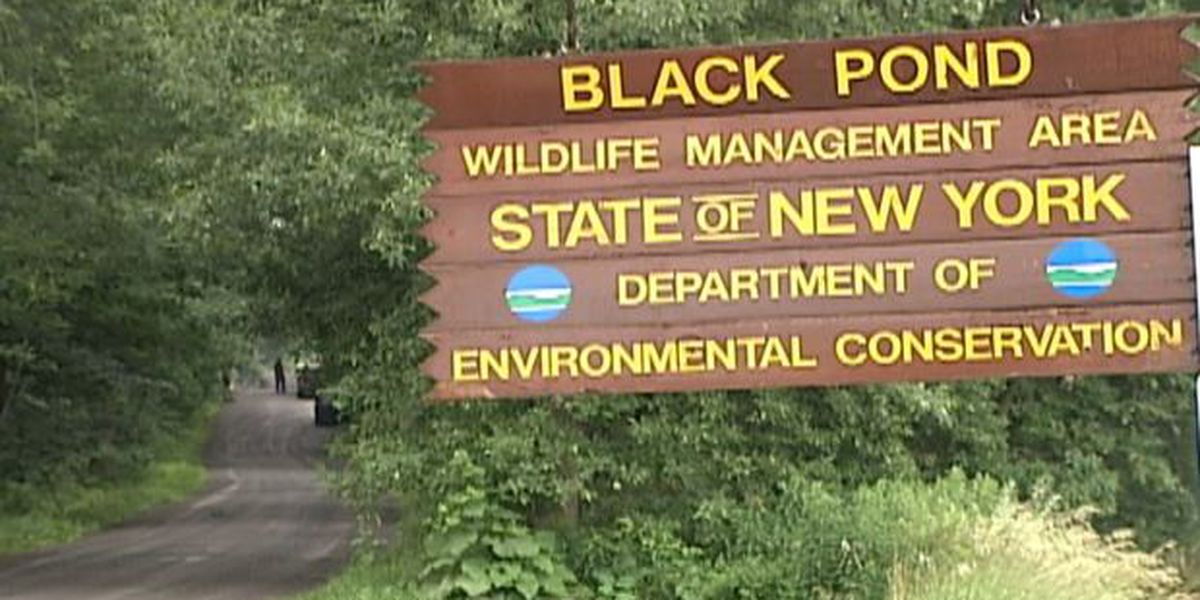 Black Pond now off limits to foot traffic