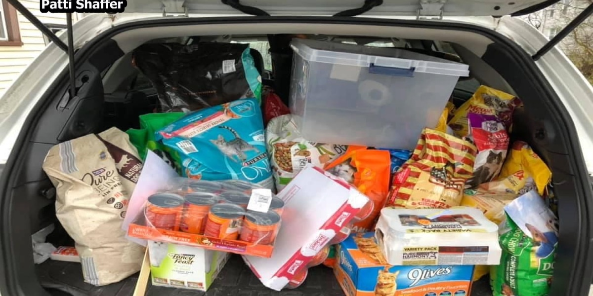 Area girl scouts work to donate food for our furry friends