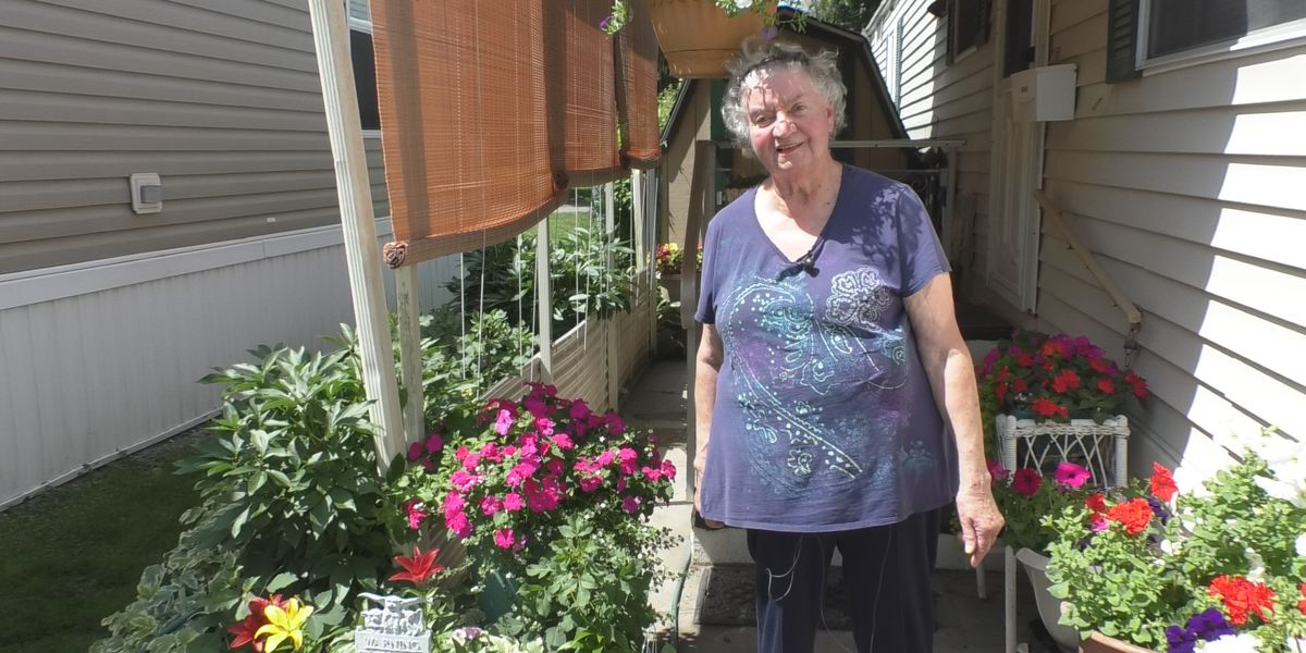 Watertown woman's flower garden brings joy