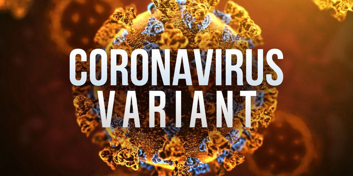 New coronavirus variant in New York spurs caution & concern