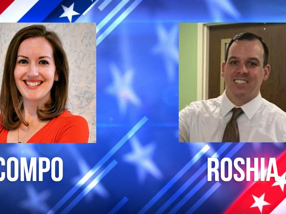 Compo, Roshia get most votes in Watertown city council primary