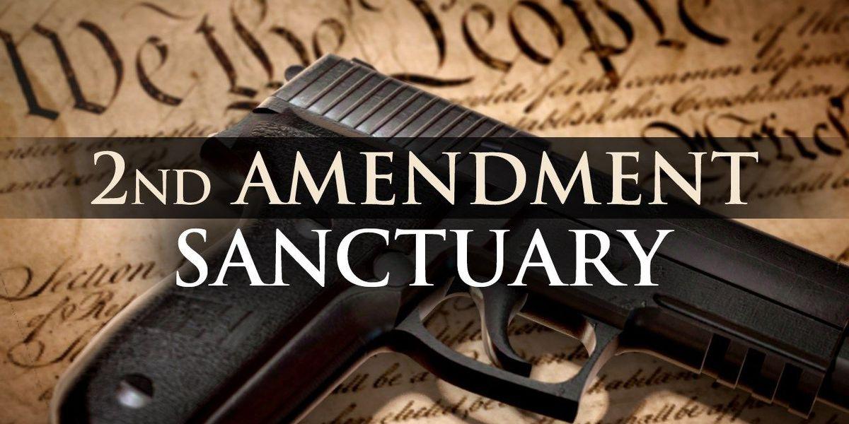 Second Amendment sanctuary proposed in Jefferson County
