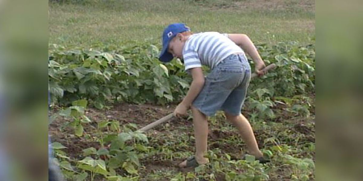 Blast From The Past: 2001 gardening for a good cause