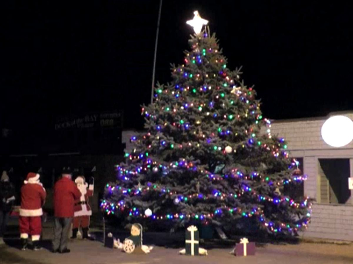 Alex Bay lights up Christmas tree for the season