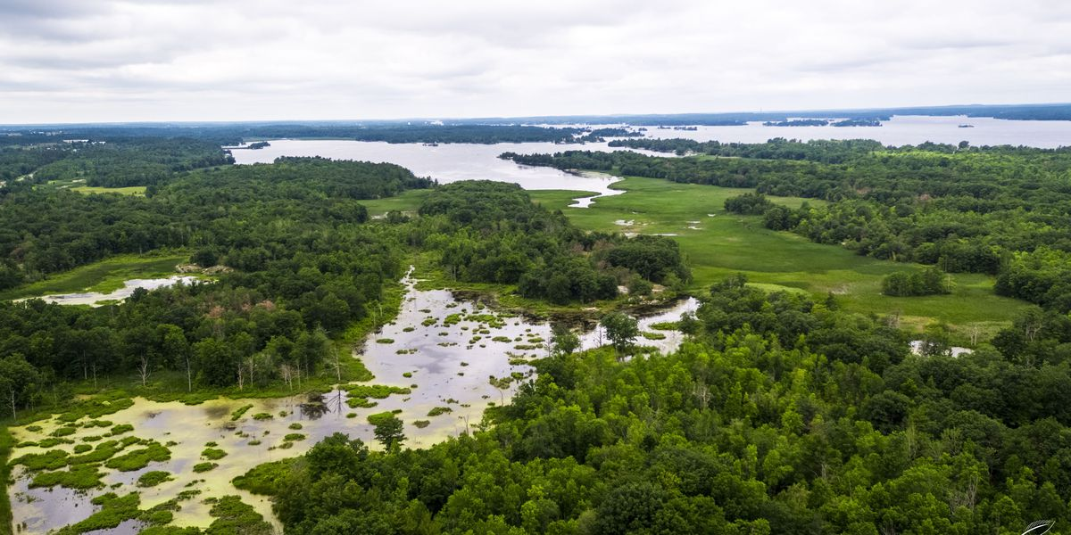 Town of Alexandria land acquired to protect water quality