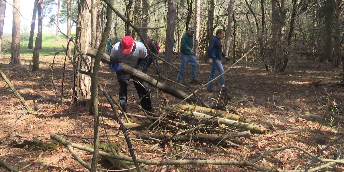 Friends of Thompson Park work to trim the trails