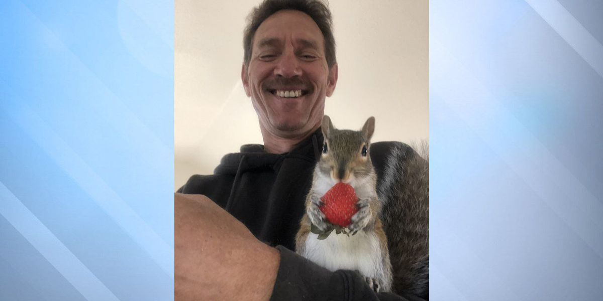 State takes squirrel from animal rescuer