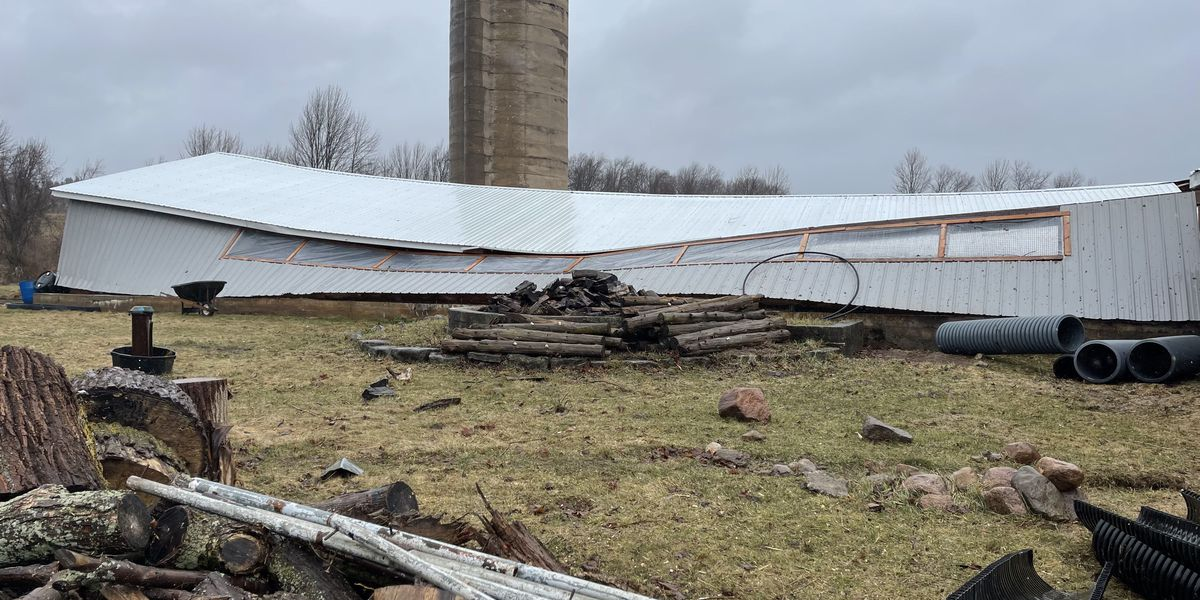 Barn roof collapses, injures sheep during storm