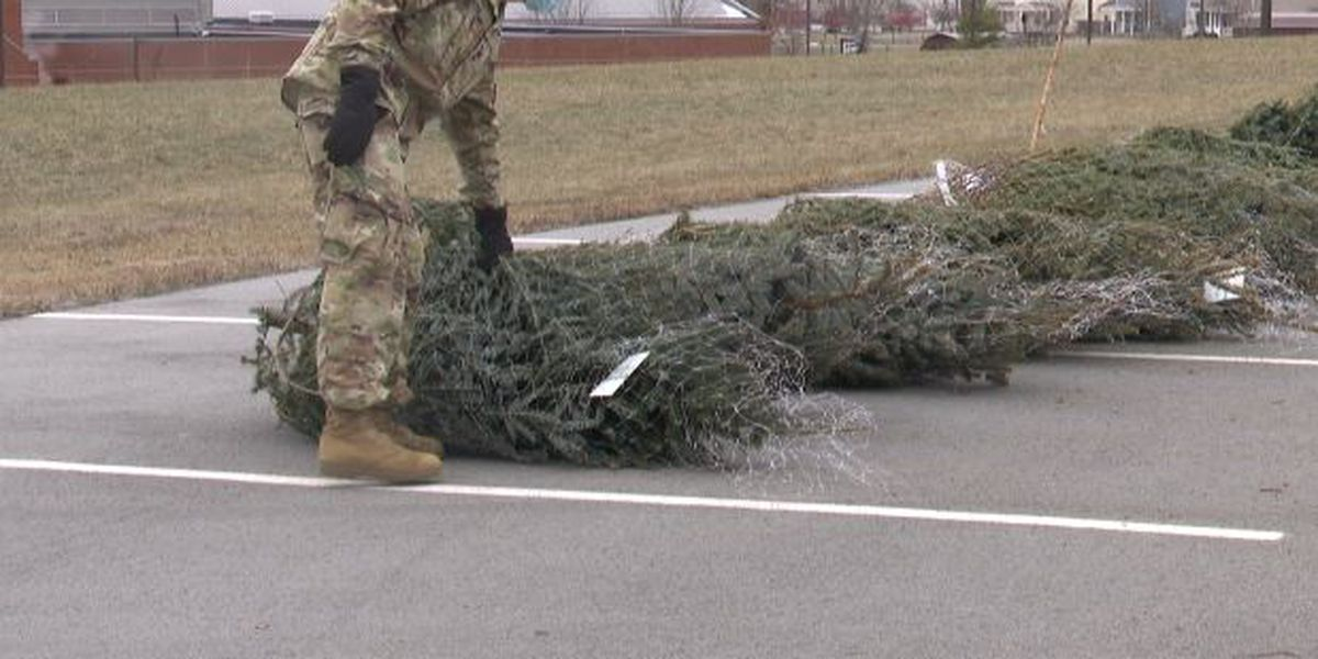 Trees for Troops brightens soldiers' holidays