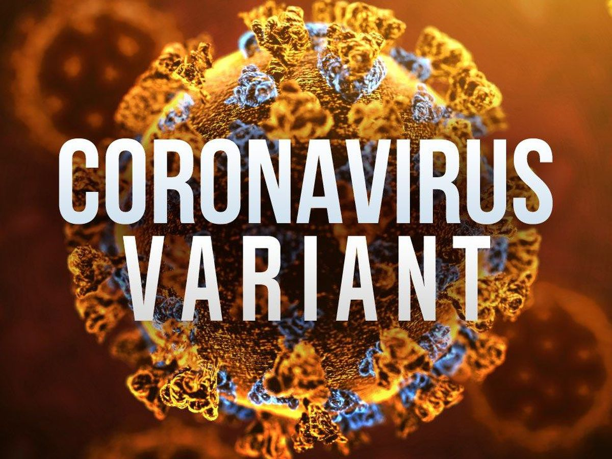 COVID variant 'spreads more easily,' says local infectious disease doctor