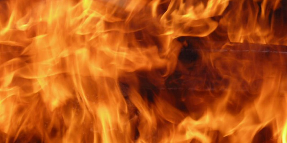 Fire leaves 2 people homeless in Lewis County