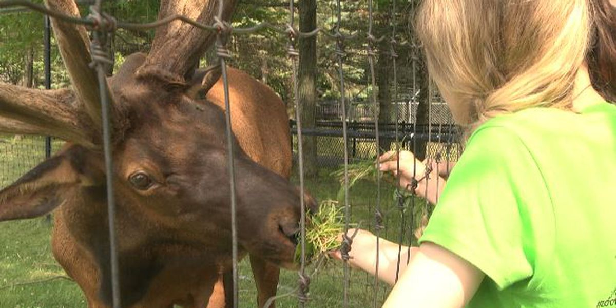Teens learn about zoologist careers this summer