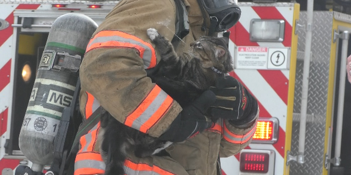 Residents safe, pets rescued in Watertown fire