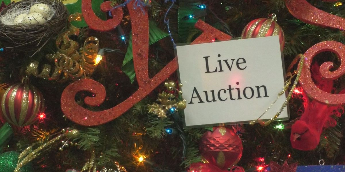 More than 70 Christmas trees up for grabs during North Country Festival of Trees auction