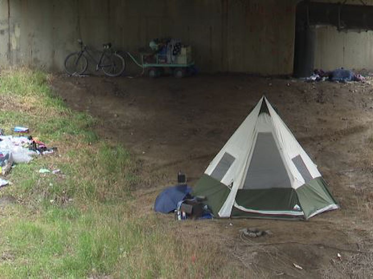 Neighbors concerned about people living under bridge