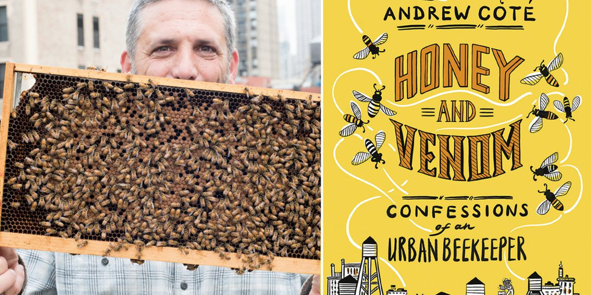 Honey and Venom: Confessionals of a Urban Beekeeper