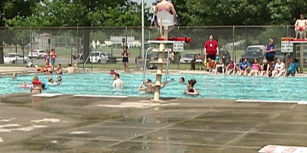 Ruggiero: pool plan 'vindictive against taxpayers'