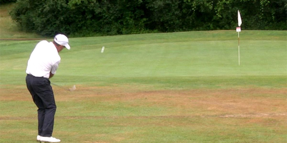 Sports highlights: city golf tourney & junior college seasons