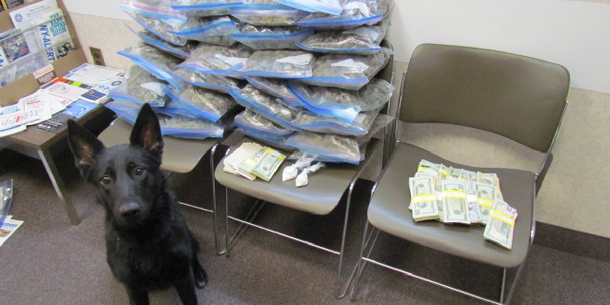 Canton police make stop, seize pot, coke, cash